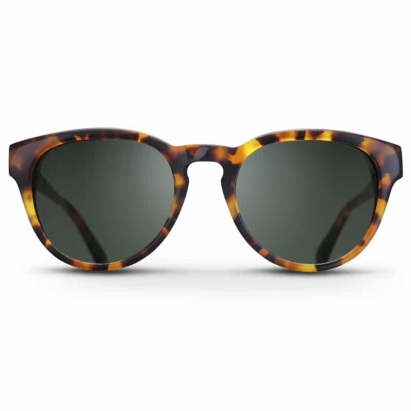 Triwa Havana Ernest Sunglasses front view